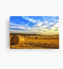 Halcyon Harvest Days Canvas Print
