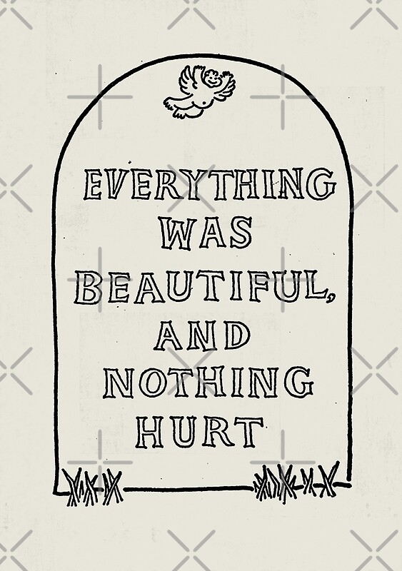 Image result for everything was beautiful and nothing hurt