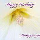 White Petunia Birthday Card by Ellesscee