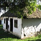 Old Village House by branko stanic