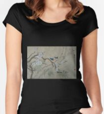 Plum Blossom in Spring Women's Fitted Scoop T-Shirt