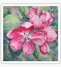 Flower of Crab-apple Sticker