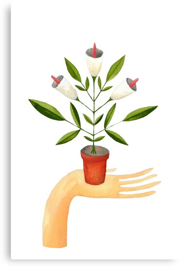 Potted plant in hand by zsalto