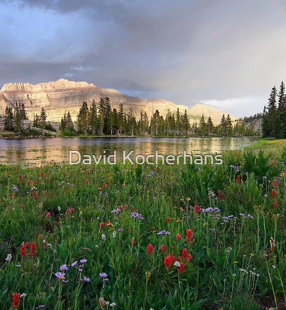 Mountain Rainbow by David Kocherhans