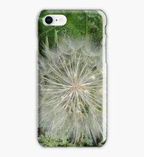 Salsify iPhone Case/Skin