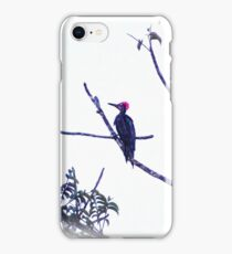 "THE REAL ""WOODY THE WOODPECKER"" iPhone Case/Skin"