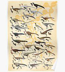 Ornithomimosaurs and Alvarezsaurs Poster
