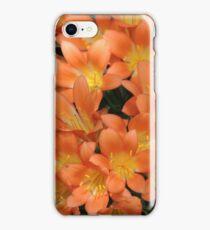 Clever Clivia iPhone Case/Skin