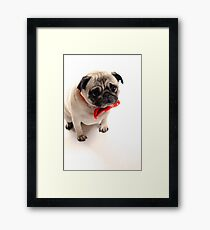 Is it christmas yet??... Framed Print