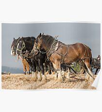 Heavy Horses Poster