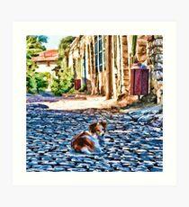 Dog on old small street Art Print