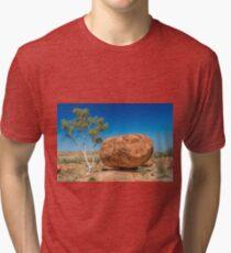 Small Tree Big Rock Tri-blend T-Shirt
