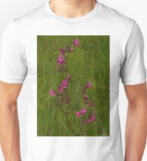 Red Campion in Burntollet Woods Unisex T-Shirt