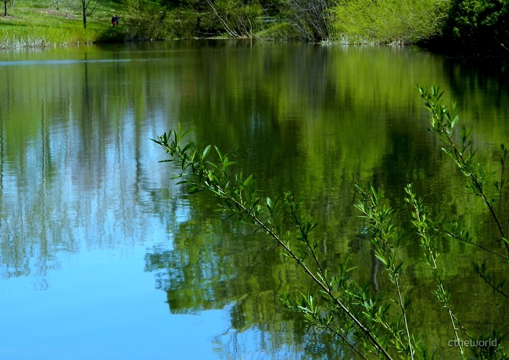 Kemper Park Pond     ^ by ctheworld