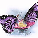 Butterfly Fairies by Svenja Gosen