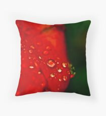 dew on a rose Throw Pillow