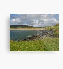 Donegal Splendor Metal Print