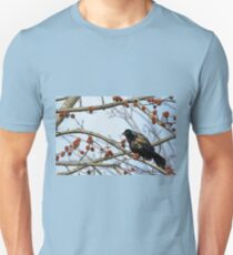 Grackle Colors T-Shirt