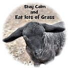 Stay Calm - and eat lots of Grass by George Petrovsky