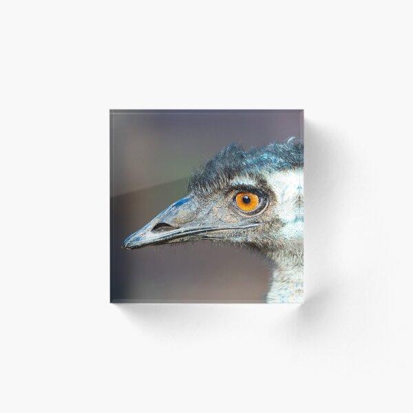 Australian Emu Acrylic Block
