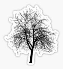 Dead Tree Sticker