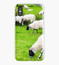 View of English grazing sheep in countryside iPhone Case