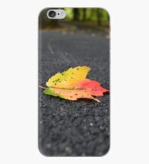 Colors Of Fall iPhone-Hülle & Cover