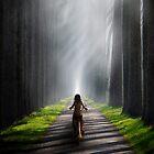 Misty Shadows by Cliff Vestergaard