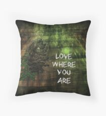 Love Where You Are Throw Pillow