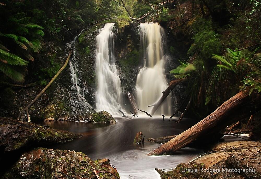 Hogarth Falls - Strahan, Tasmania by Ursula Rodgers Photography