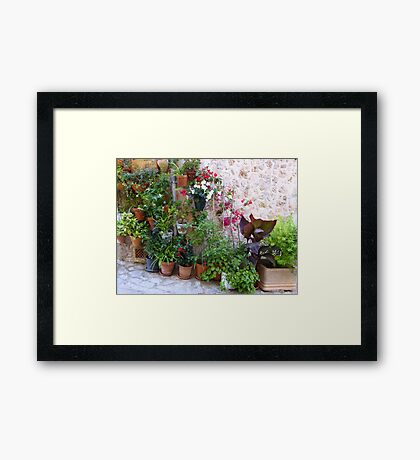 The Corner Plants.....................................Majorca Framed Print