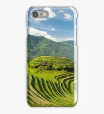 Rice fields in china iPhone Case/Skin
