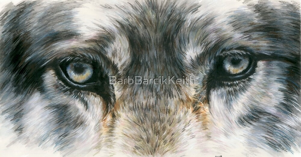 Eye-Catching Wolf by BarbBarcikKeith