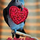 Be My Valentine by Debbie Stobbart