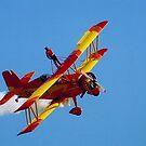 Stunt Plane by Debbie Stobbart