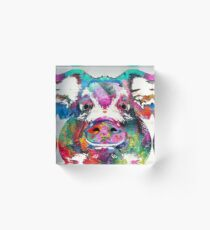 Colorful Pig Art - Squeal Appeal - By Sharon Cummings Acrylic Block
