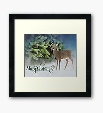 Merry Christmas and a Happy New Year Framed Print