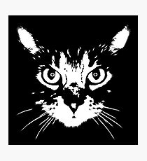 cat - b&w Photographic Print