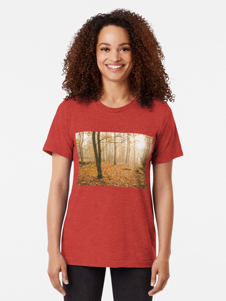 Alternate view of Foggy morning autumn forest Tri-blend T-Shirt