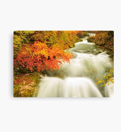 The Soteska Vintgar gorge in Autumn Canvas Print