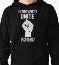 Introverts unite separately in your own homes Pullover Hoodie