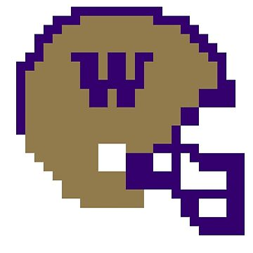 Washington Huskies 8-bit Helmet by FPrints