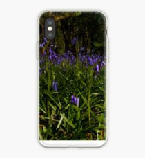 Bluebells in Prehen Woods iPhone Case