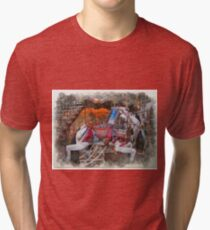 Antique Carousel Horse Tri-blend T-Shirt