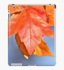 Nature's Pigment iPad Case/Skin