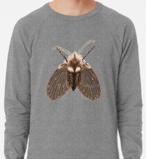 Clogmia albipunctata Lightweight Sweatshirt