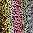Rainbow Trout Skin Phone case by dvampyrelestat