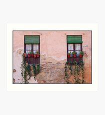 Windows in Andalusia Art Print