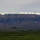Snow on Mauna Kea by photosbypamela