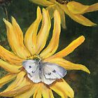 White Butterfly in Summer by Laura Wilson